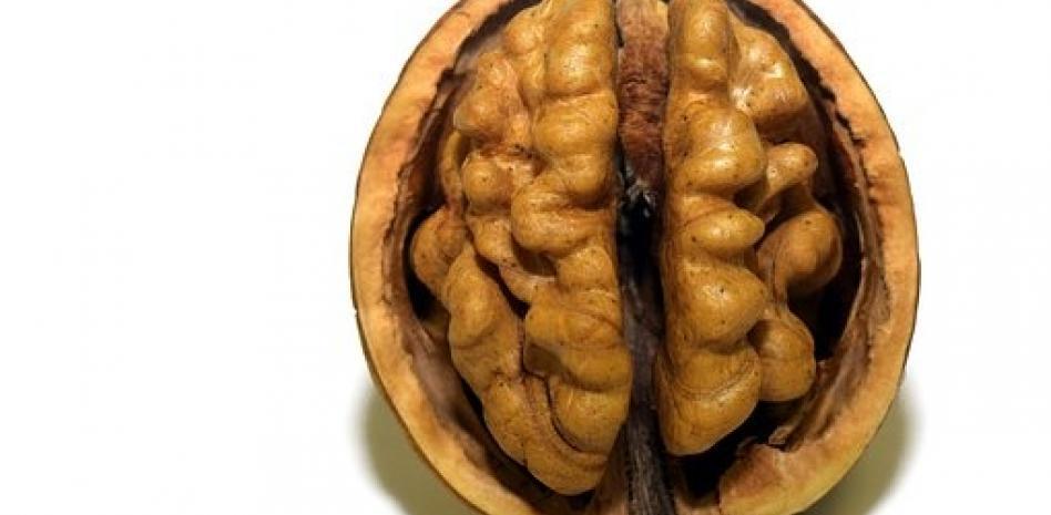 La gente inteligente come nueces: ¿son la mejor gasolina para el cerebro?