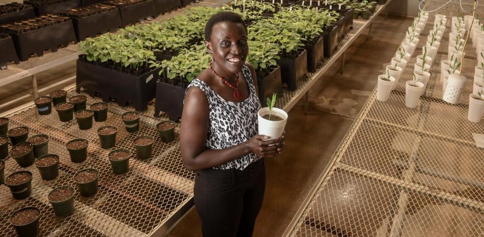 Esther Ngumbi, la cara visible de África como futura potencia alimentaria